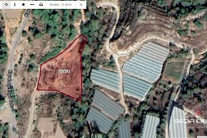 5560 m2 land for hoppy garden for sale in Konakli - Alanya alanya