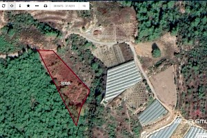 4820 m2 land for hoppy garden for sale in Konakli - Alanya alanya